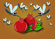 Κουνούπια γύρω από το γρανάτη ελεύθερη απεικόνιση δικαιώματος