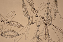 Κουνούπι καλωδίων Στοκ Εικόνες