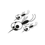 Κουνούπι στο άσπρο υπόβαθρο Στοκ Φωτογραφία