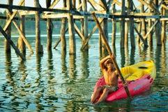 Κουπί αγοριών μια βάρκα με το ξύλινο υπόβαθρο γεφυρών Στοκ εικόνες με δικαίωμα ελεύθερης χρήσης