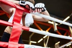 Κουρασμένος μπόξερ που στηρίζεται ενάντια στα σχοινιά δαχτυλιδιών Στοκ εικόνες με δικαίωμα ελεύθερης χρήσης