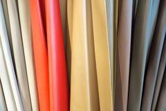 Κουρτίνα δέρματος Στοκ εικόνα με δικαίωμα ελεύθερης χρήσης