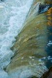 Κουρτίνα νερού πτώσεων Tumwater 2 Στοκ Φωτογραφία