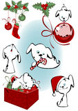 κουτάβια Χριστουγέννων Στοκ Φωτογραφίες