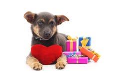 Κουτάβι με τα δώρα και την καρδιά παιχνιδιών Στοκ φωτογραφία με δικαίωμα ελεύθερης χρήσης