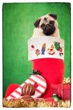 Κουτάβι στη γυναικεία κάλτσα Χριστουγέννων Στοκ Φωτογραφίες