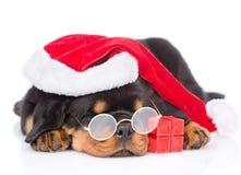 Κουτάβι Rottweiler με τα γυαλιά, το κόκκινα καπέλο santa και το κιβώτιο δώρων απομονωμένος Στοκ φωτογραφίες με δικαίωμα ελεύθερης χρήσης