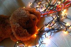 Κουτάβι Teddy που βρίσκεται στα φω'τα νεράιδων με τα θερμά χρώματα Στοκ Φωτογραφίες