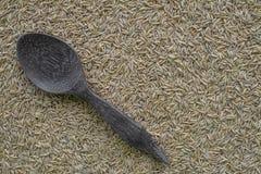 Κουτάλα με το σπόρο ρυζιού Στοκ Εικόνες