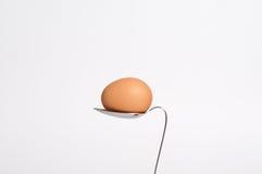 κουτάλι αυγών Στοκ Εικόνες