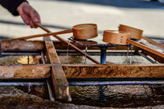 Κουτάλες μπαμπού Στοκ εικόνα με δικαίωμα ελεύθερης χρήσης