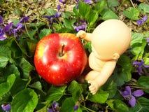 Κουτσούβελο και η Apple Στοκ Εικόνα