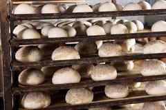 Κουλούρια ψωμιού σουσαμιού έτοιμα για το φούρνο Στοκ Εικόνα