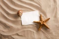 Κοχύλια θάλασσας με την άμμο Στοκ Εικόνα