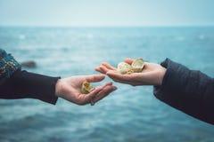 Κοχύλια θάλασσας στα χέρια δύο κοριτσιών ενάντια στη θάλασσα Στοκ Φωτογραφίες