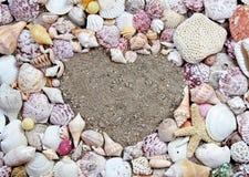 κοχύλια μορφής θάλασσας καρδιών Στοκ Φωτογραφίες