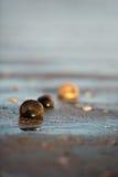 κοχύλι άμμου παραλιών υγρό Στοκ Εικόνα