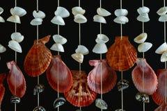 κοχύλι θάλασσας ντεκόρ Στοκ φωτογραφία με δικαίωμα ελεύθερης χρήσης