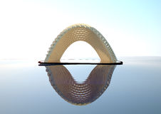 Κοχύλι καρύδων Στοκ εικόνα με δικαίωμα ελεύθερης χρήσης