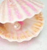 κοχύλι μαργαριταριών wuth Στοκ εικόνα με δικαίωμα ελεύθερης χρήσης