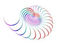 κοχύλι χρώματος Στοκ φωτογραφίες με δικαίωμα ελεύθερης χρήσης