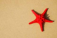 κοχύλι 2 Στοκ φωτογραφίες με δικαίωμα ελεύθερης χρήσης