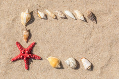 Κοχύλια αστεριών και θάλασσας με την άμμο Στοκ Εικόνα