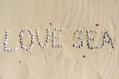 κοχύλια θάλασσας άμμου όμορφη κενή θερινή πετοσφαίριση παραλιών σφαιρών ανασκόπησης Τοπ όψη Στοκ φωτογραφία με δικαίωμα ελεύθερης χρήσης