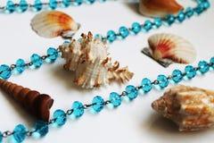Κοχύλια θάλασσας και μπλε χάντρες Στοκ Εικόνες