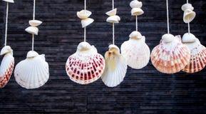 Κοχύλια θάλασσας που κρεμούν από το σχοινί Στοκ εικόνα με δικαίωμα ελεύθερης χρήσης