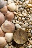 Κοχύλια θάλασσας, πυξίδα και η κινηματογράφηση σε πρώτο πλάνο πετρών στοκ φωτογραφία με δικαίωμα ελεύθερης χρήσης
