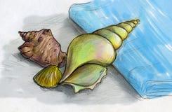 Κοχύλια θάλασσας σε μια μπλε πετσέτα ελεύθερη απεικόνιση δικαιώματος