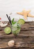 Κοχύλια και mojito θάλασσας Στοκ εικόνα με δικαίωμα ελεύθερης χρήσης