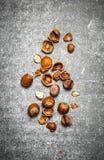 κοχύλια καρυδιών Στοκ φωτογραφία με δικαίωμα ελεύθερης χρήσης