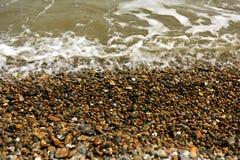 Κοχύλια, πέτρες, άμμος Στοκ Εικόνα