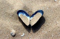 Κοχύλι καρδιών στην άμμο στην παραλία Στοκ εικόνα με δικαίωμα ελεύθερης χρήσης