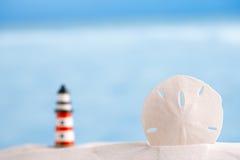 Κοχύλι δολαρίων άμμου στο υπόβαθρο θάλασσας και φάρων Στοκ εικόνα με δικαίωμα ελεύθερης χρήσης