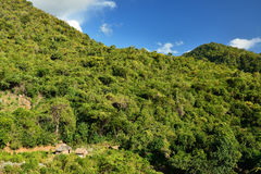 Κούβα, ίχνος τουριστών στις κορυφές Pico Turquino Στοκ φωτογραφία με δικαίωμα ελεύθερης χρήσης