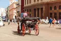 Κούβα Αβάνα 8 Φεβρουαρίου 2018 - ένα horse-drawn κάρρο στην οδό Στοκ Εικόνες