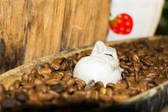 Κούκλες γατών και φασόλια καφέ για την εσωτερική διακόσμηση Στοκ Εικόνες