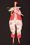 Κούκλα με τα καρότα στοκ εικόνες με δικαίωμα ελεύθερης χρήσης