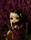 Κούκλα στην ερείκη φθινοπώρου Στοκ Εικόνες
