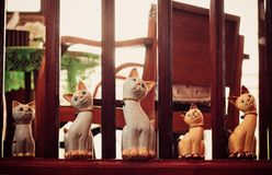 Κούκλες γατών στοκ εικόνες