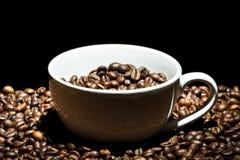 κούπα καφέ φασολιών στοκ εικόνα