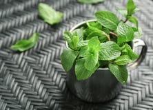 Κούπα με τα φρέσκα φύλλα βάλσαμου λεμονιών στοκ εικόνα