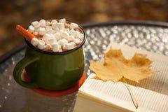 Κούπα της καυτά σοκολάτας και Marshmallows Στοκ εικόνες με δικαίωμα ελεύθερης χρήσης