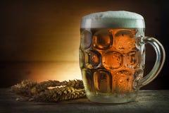 Κούπα της μπύρας Στοκ εικόνες με δικαίωμα ελεύθερης χρήσης