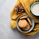 Κούπα του τσαγιού με το γάλα και των μπισκότων σε ένα μαλακό χειμερινό μαντίλι Στοκ Φωτογραφία