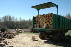 κούτσουρα ξύλινα Στοκ Εικόνες