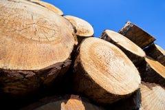 κούτσουρα ξύλινα Στοκ Φωτογραφία